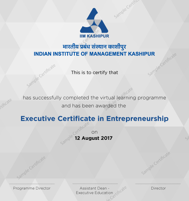 Online Entrepreneurship Courses Executive Certification Course