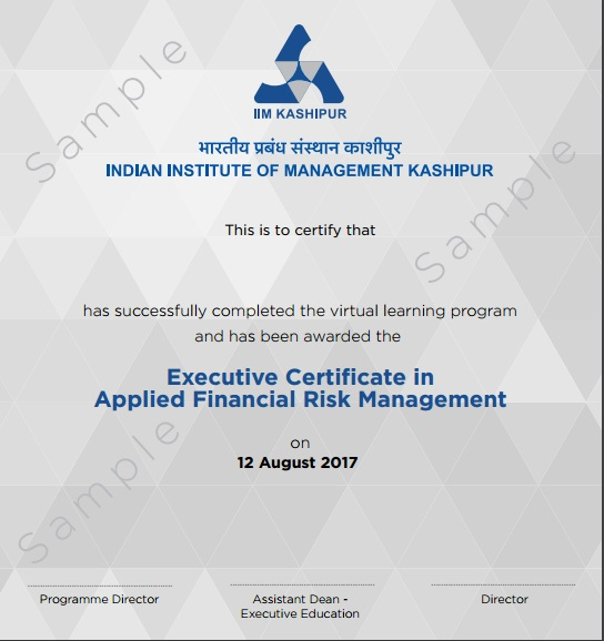 Financial Risk Management Course | Online Certification Program from ...