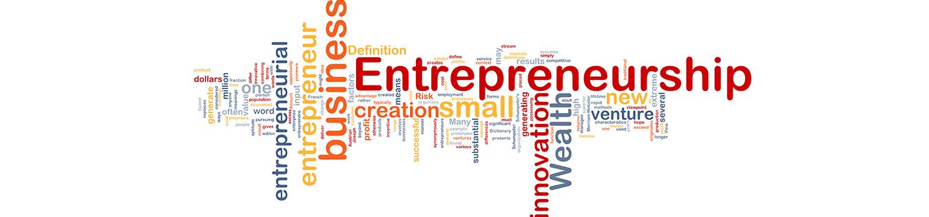 entrepreneurship rohtak course in india